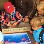 Seznámení dětí s nejběžnějšími zkamenělinami