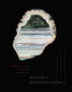 Obálka knihy Acháty barrandienu a další leštitelné materiály