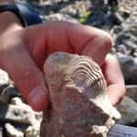 geologicka_exkurze_Koneprusy