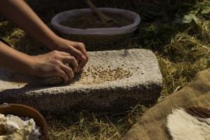 """Výstava """"Neolit – Neuvěřitelný svět prvních zemědělců mezi Ohří a Berounkou"""""""