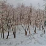 Zimní dopoledne