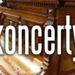 koncerty