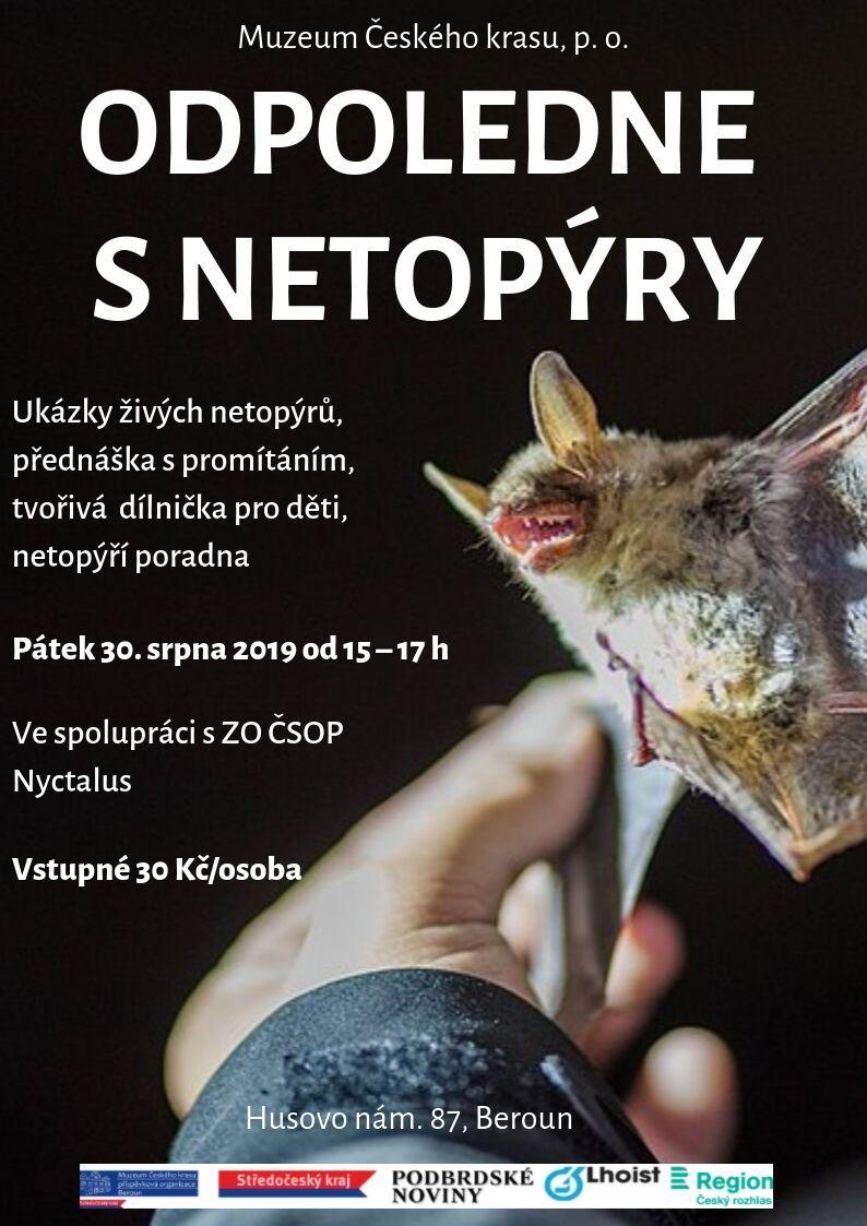 plakát_netopýři