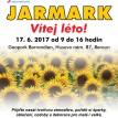w_Beroun2017_leto